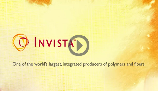 Learn More about INVISTA